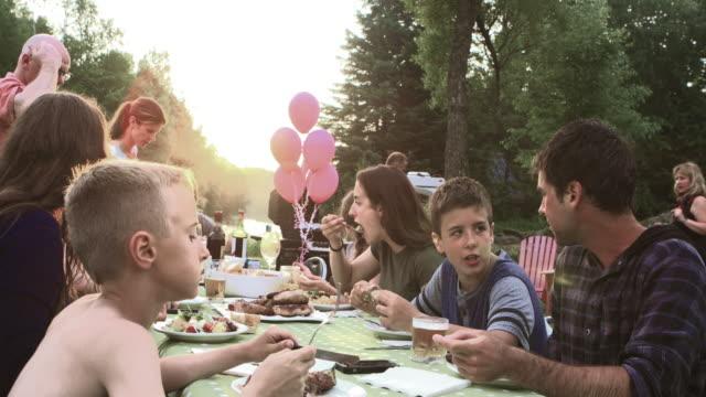 vídeos y material grabado en eventos de stock de gran celebración familiar de verano barbacoa naturaleza - reunión evento social