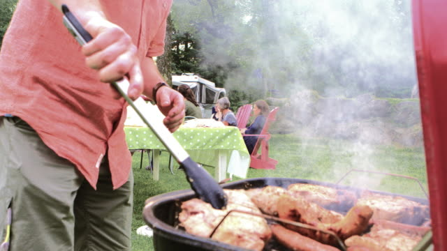 summer bbq large family celebration nature - picnic stock videos and b-roll footage
