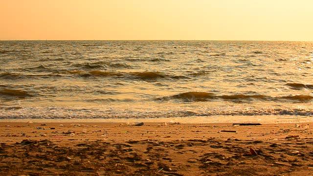 vidéos et rushes de été plage au coucher du soleil - hd format