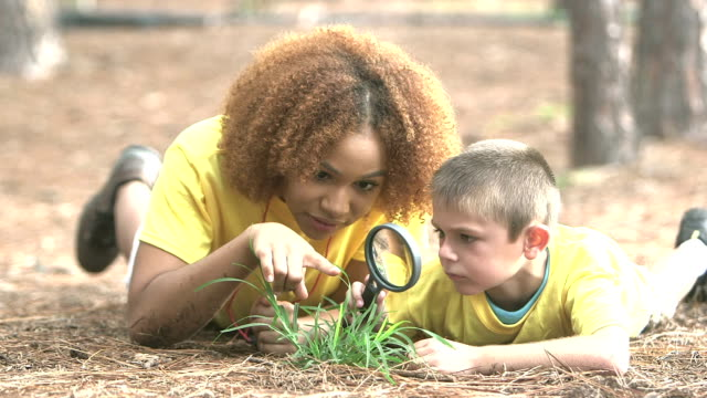 summer camp counselor with little boy exploring nature - summer camp helper stock videos & royalty-free footage
