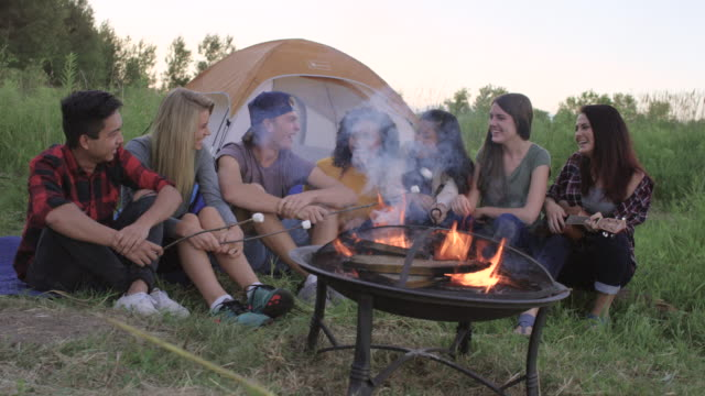 summer camping trip with friends - camp fire stock videos & royalty-free footage