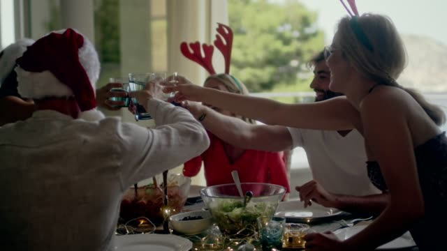 summer christmas celebration toast - funny merry christmas greetings stock videos and b-roll footage