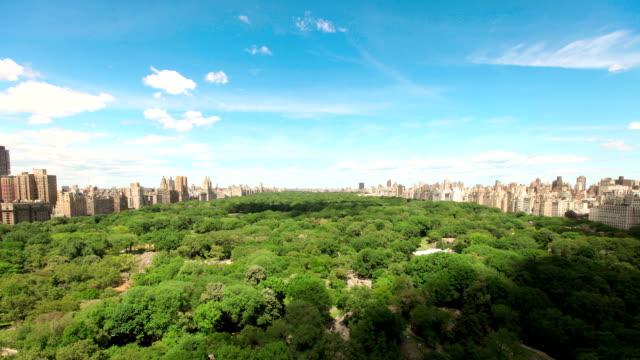sommer wolken über den central park-timelapse - central park manhattan stock-videos und b-roll-filmmaterial