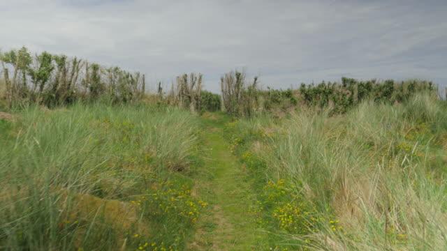 アイルランドのドニゴール田園地帯夏 - 夏休み点の映像素材/bロール