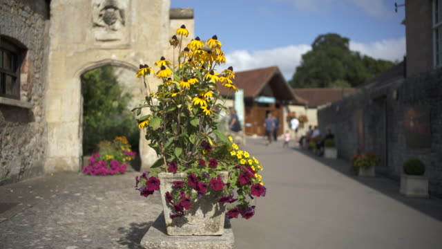 summer flowers at the entrance to glastonbury abbey. - village stock videos and b-roll footage