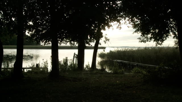Sommaren skogssjö