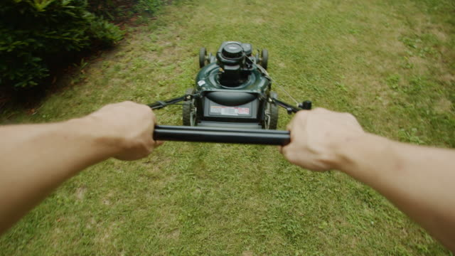 summer grass lawn mower point of view human hands sunset garden - point of view stock videos & royalty-free footage
