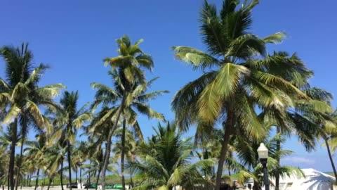 vídeos y material grabado en eventos de stock de verano en miami beach - miami