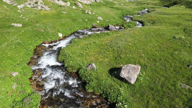 vidéos et rushes de summer in the alps - torrent