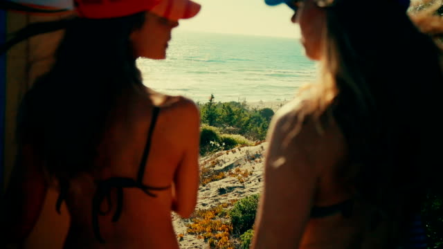 Summer is here: surfer girls watching the sea