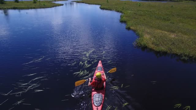 summer kayak river nature pov peaceful - kayak stock videos & royalty-free footage