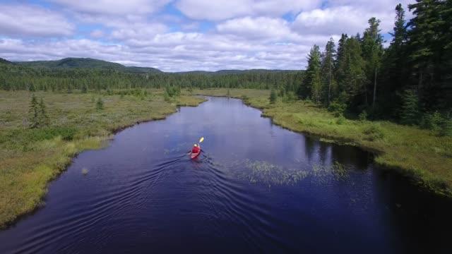 summer kayak river nature pov peaceful - kayaking stock videos & royalty-free footage