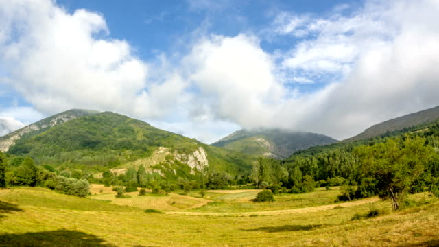 Summer landscape in mountains and dark blue sky 4k