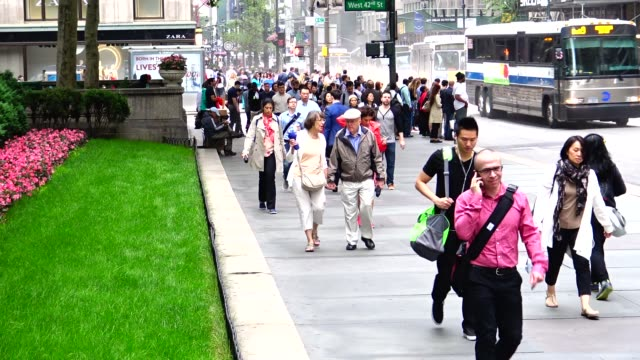 summer morning rush hour traffic via 42nd street and 5th avenue, midtown manhattan, new york city, usa - 42nd street stock videos & royalty-free footage