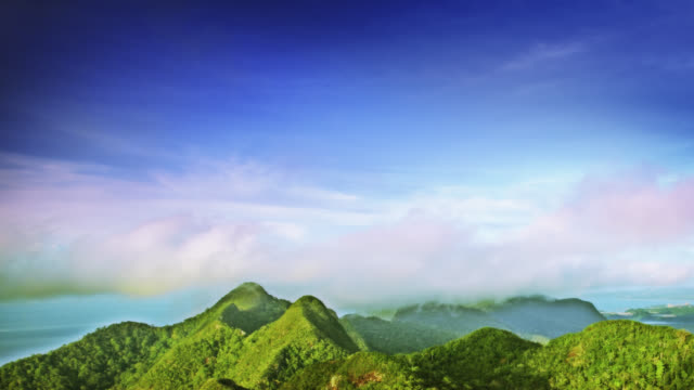 summer nature - langkawi stock videos and b-roll footage