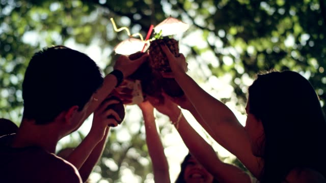 summer toast at the party - garden party stock videos & royalty-free footage