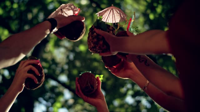 summer toast at the party - coconut palm tree stock videos & royalty-free footage