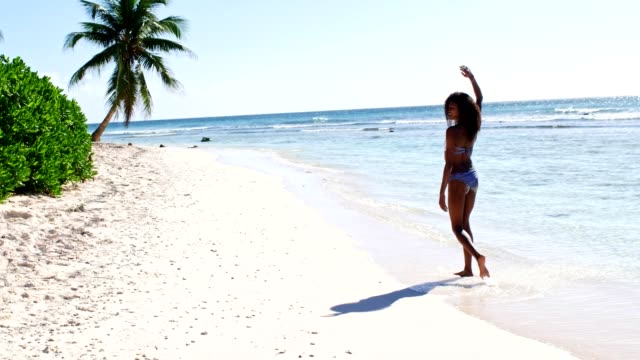 summer vacation in dominican republic - dominican republic stock videos and b-roll footage