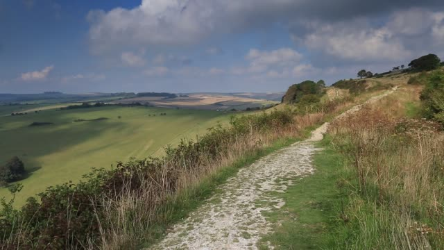 Summer view over the South Downs National Park, near Findon village, West Sussex, England, UK