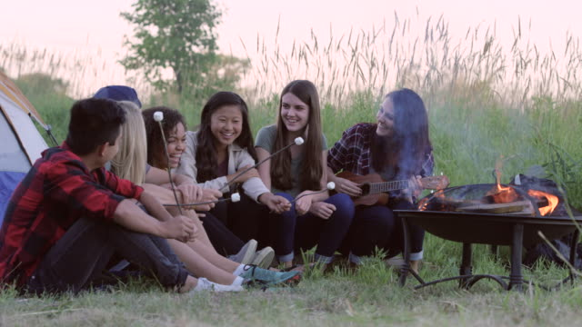 Summertime Camping med vänner