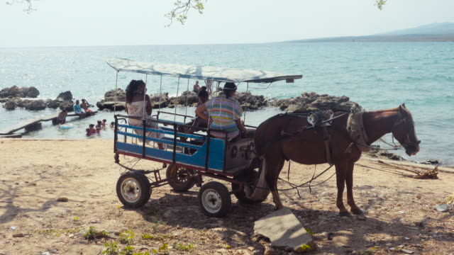 Summertime with carriage and horse at Tropical country. Local people swimming in the Caribbean sea and others under the shadow. Travel Like a Local - Brief