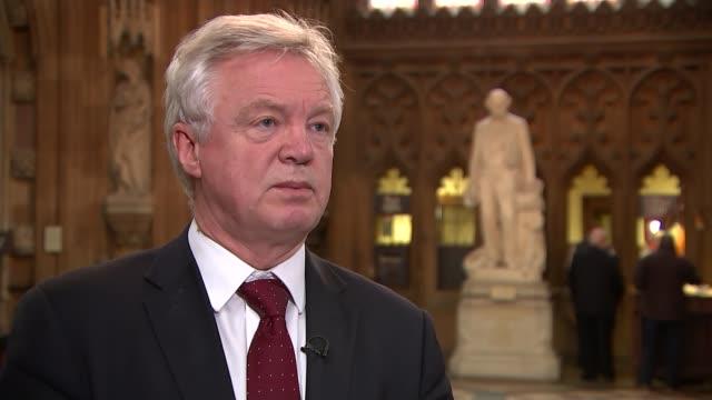 david cameron comments on eu referendum 'misinterpretation' england london house of commons int david davis mp interview sot - g7サミット点の映像素材/bロール