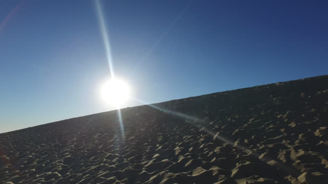 summit of the pyla dune, a summer morning. against the light - dune of pilat stock videos and b-roll footage