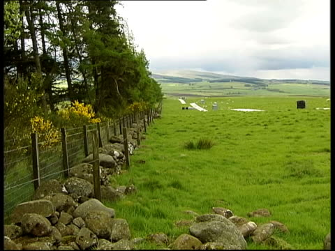 g8 summit preparations / proposed poverty protest scotland perthshire nr gleneagles sheep on farm in f/g and mountains beyond pan ms ewe and lamb... - perthshire stock videos & royalty-free footage