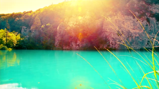 sun and nature - turquoise colored stock videos & royalty-free footage
