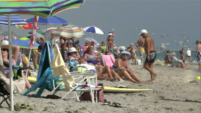 vidéos et rushes de ms sun bathers at beach shore / miami, florida, usa - bain de soleil