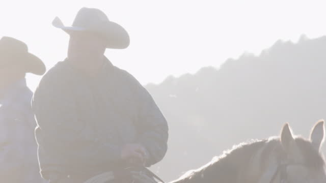 sun flares lens tilt up through horses legs to rancher sitting on his horse ready to work - rancher stock videos & royalty-free footage