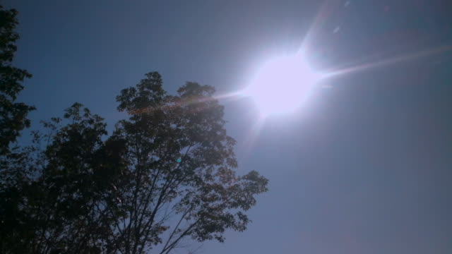 sun in the day dolly shot - uv protection stock videos and b-roll footage