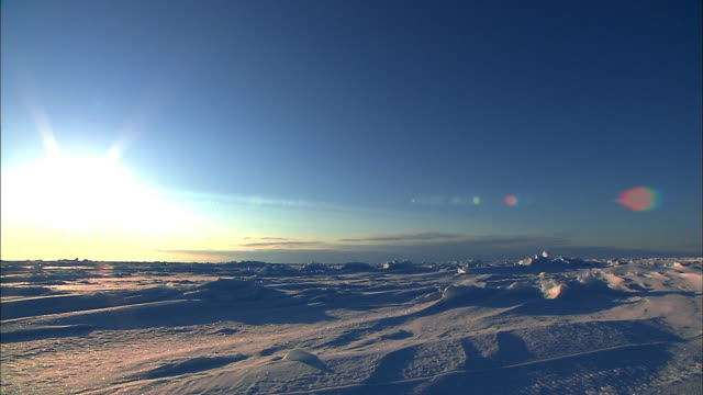 sun is setting at antarctica - antarctica sunset stock videos & royalty-free footage