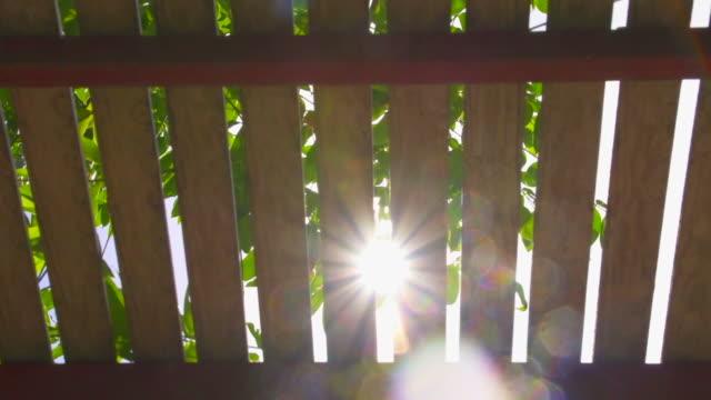 vídeos y material grabado en eventos de stock de pase lath luz de sol - mancha solar