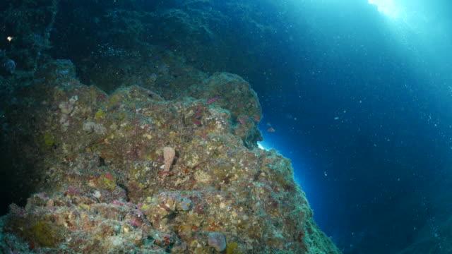 Sun light through underwater cave