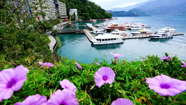 sun moon lake in shuishe pier, taiwan - sun moon lake stock videos and b-roll footage
