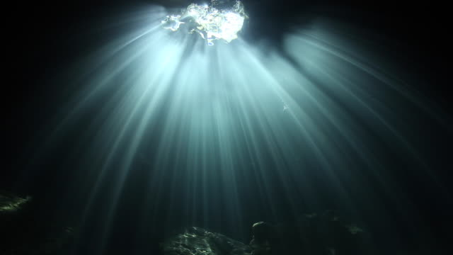 sun rays beam the top of the cave at devils den spring, florida - loch stock-videos und b-roll-filmmaterial