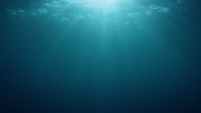 sun rays penetrating the ocean surface, loop - undersea stock videos & royalty-free footage