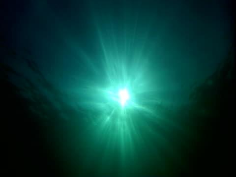 vidéos et rushes de sun rays shimmer in green water deep beneath the ocean surface. - auréole