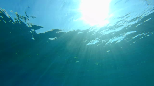 sun rays under water - below stock videos and b-roll footage