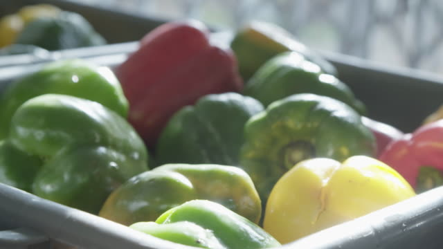 sun reflects off bell peppers in container - bell pepper stock videos & royalty-free footage