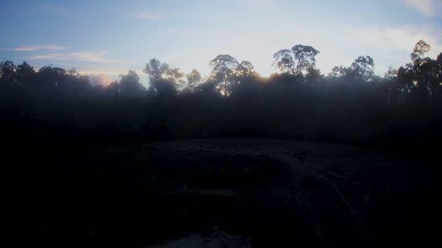 sun rises behind trees, malaysia. - monsoon stock videos & royalty-free footage