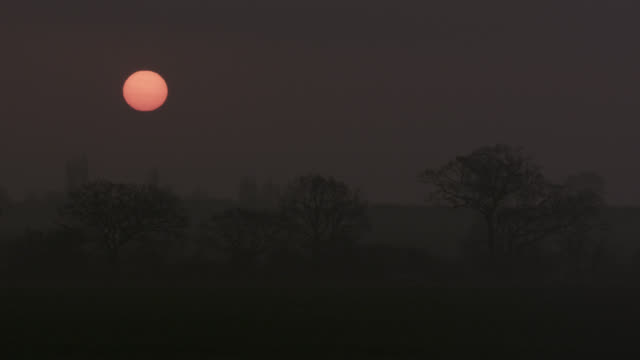 sun rises over misty countryside, essex, england - morning stock videos & royalty-free footage