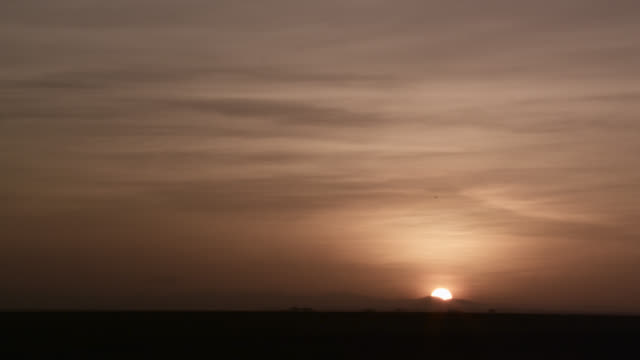 sun rises over savannah and hills, kenya - grass area stock videos and b-roll footage