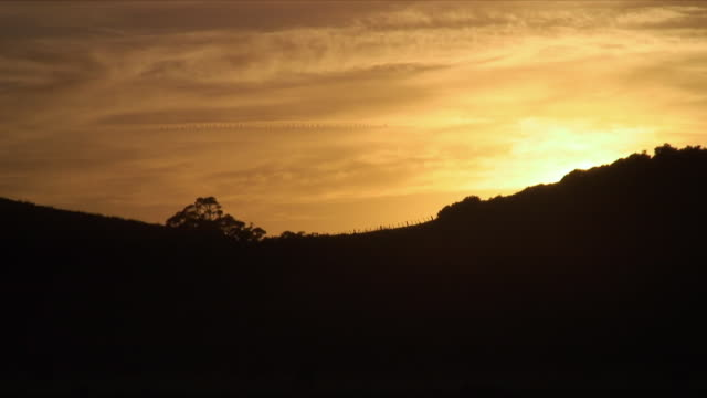 WS ZO Sun rising behind hill, Mimiwhangata, New Zealand