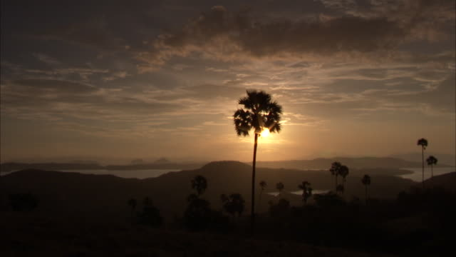 sun sets behind palm trees. - insel komodo stock-videos und b-roll-filmmaterial