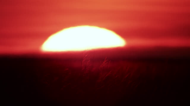 sun sets over savannah, zambia - heat haze stock videos & royalty-free footage