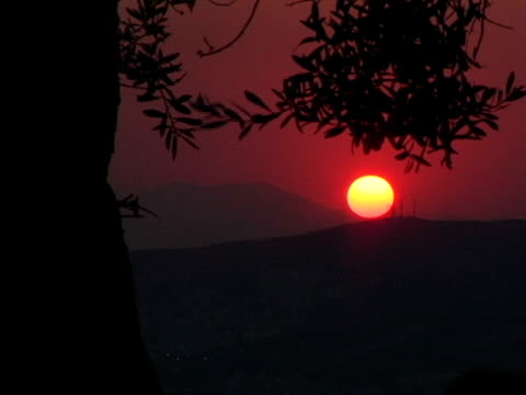 t/l, ms, sun setting behind hills, silhouette of tree in foreground, athens, greece - athens greece stock videos & royalty-free footage