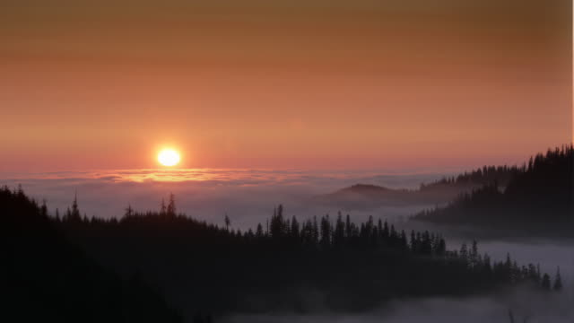 vídeos y material grabado en eventos de stock de sun setting into fog, olympic national park, wa - olympic national park