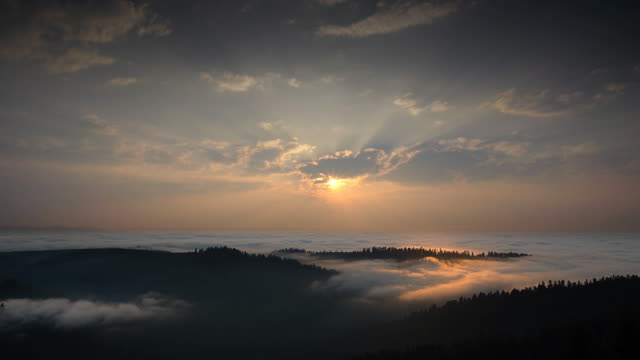 sun setting over sea of fog, redwood national park, california - raggio di sole video stock e b–roll